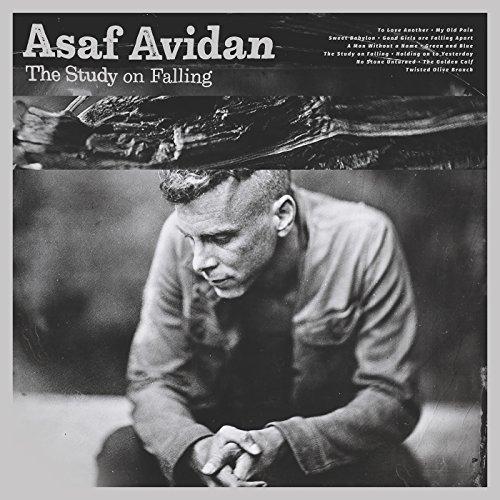 ASAF AVIDAN - THE STUDY ON FALLING (CD)