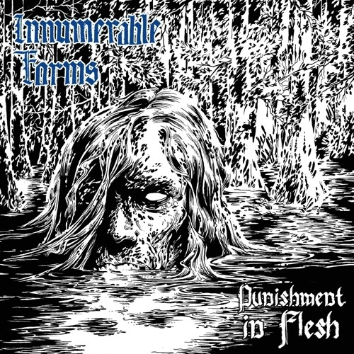 INNUMERABLE FORMS - PUNISHMENT IN FLESH (CD)