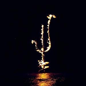 DEMON HEAD - HELLFIRE OCEAN VOID (CD)