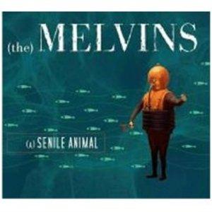 MELVINS - A SENILE ANIMAL (CD)