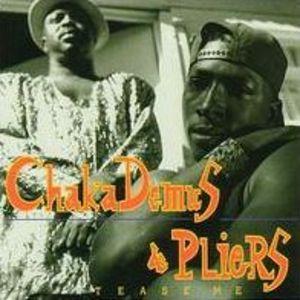 CHAKA DEMUS & PLIERS - TEASE ME (CD)
