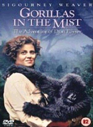 GORILLA NELLA NEBBIA / GORILLAS IN THE MIST (IMPORT) (DVD)