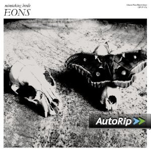 EONS - MIMICKING BIRDS -D.P. (CD)