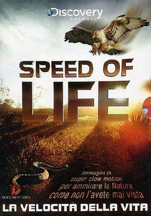 COF.SPEED OF LIFE - LA VELOCITA' DELLA VITA (2 DVD) (DVD)
