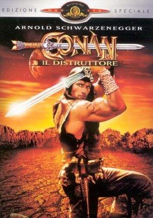 CONAN IL DISTRUTTORE (DVD)