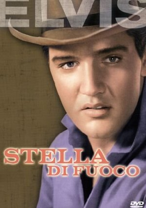 STELLA DI FUOCO (DVD)