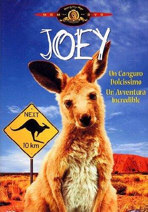 JOEY (DVD)