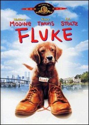 FLUKE (DVD)