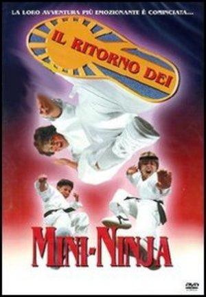 IL RITORNO DEI MINI NINJA (DVD)