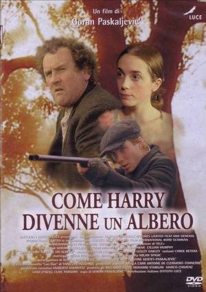 COME HARRY DIVENNE UN ALBERO (DVD)