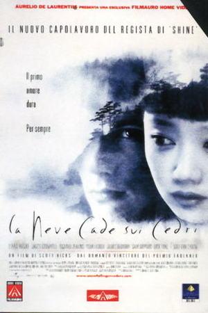 LA NEVE CADE SUI CEDRI (DVD)