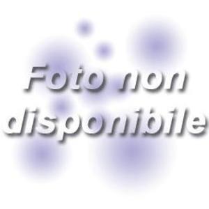 AMIR - PAURA DI NESSUNO (CD)