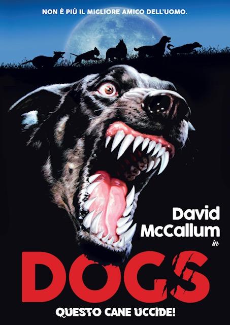 DOGS - QUESTO CANE UCCIDE (DVD)