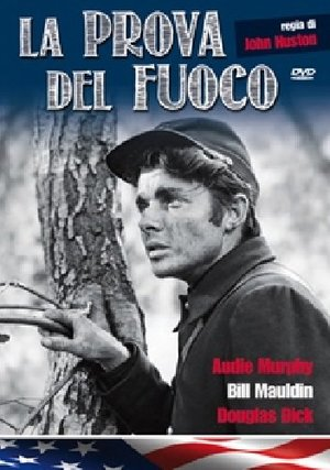 LA PROVA DEL FUOCO - RMX (DVD)