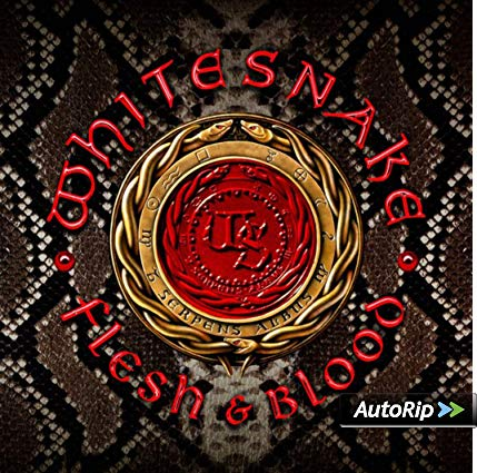 WHITESNAKE - FLESH & BLOOD (2 CD) (CD)