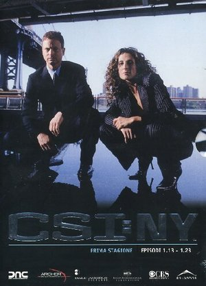 COF.C.S.I. NEW YORK - STAG. 01 PARTE 02 (EPS 13-23) (3 DVD) (DVD)