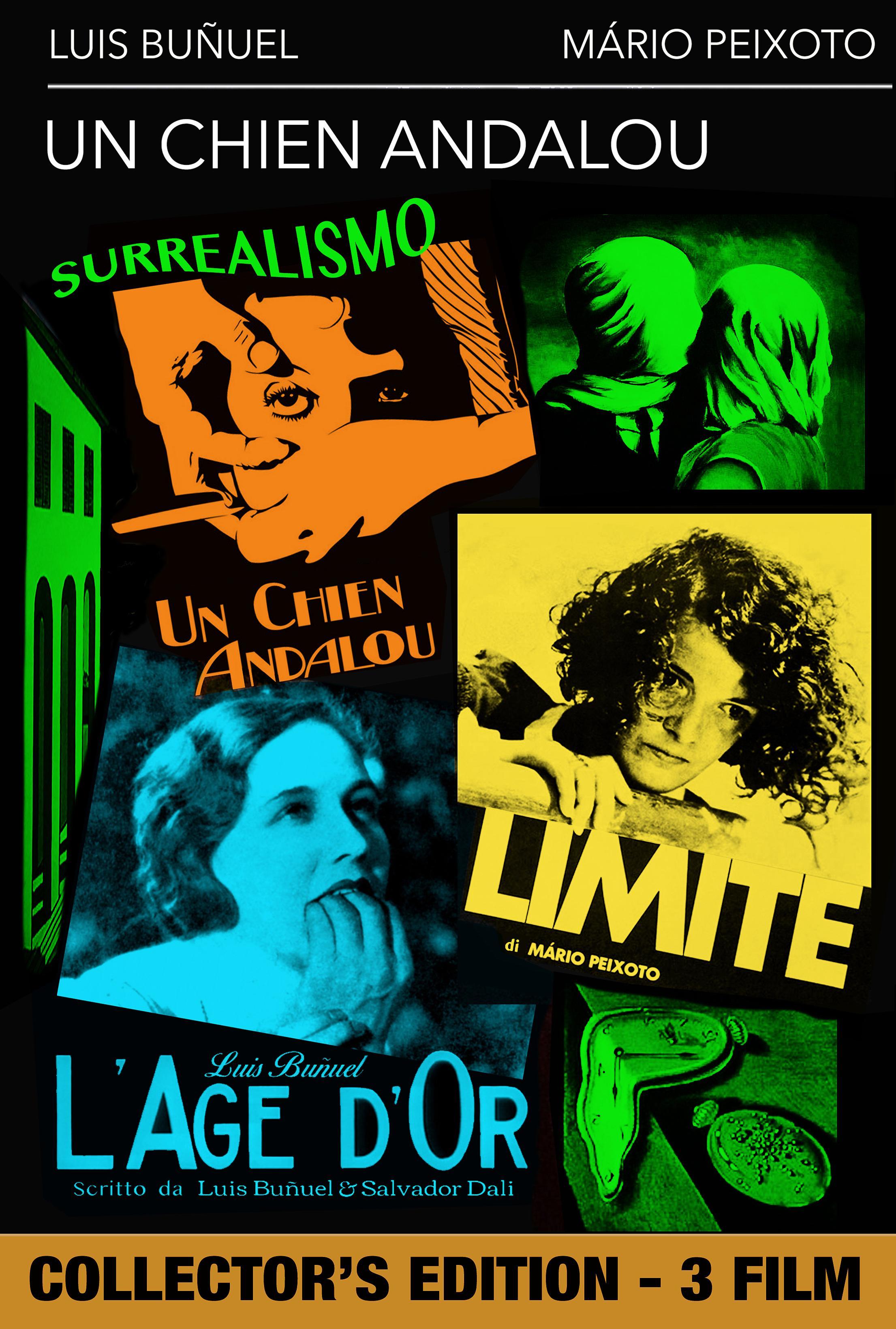 COF.UN CHIEN ANDALOU / L'AGE D'OR / LIMITE (DVD)