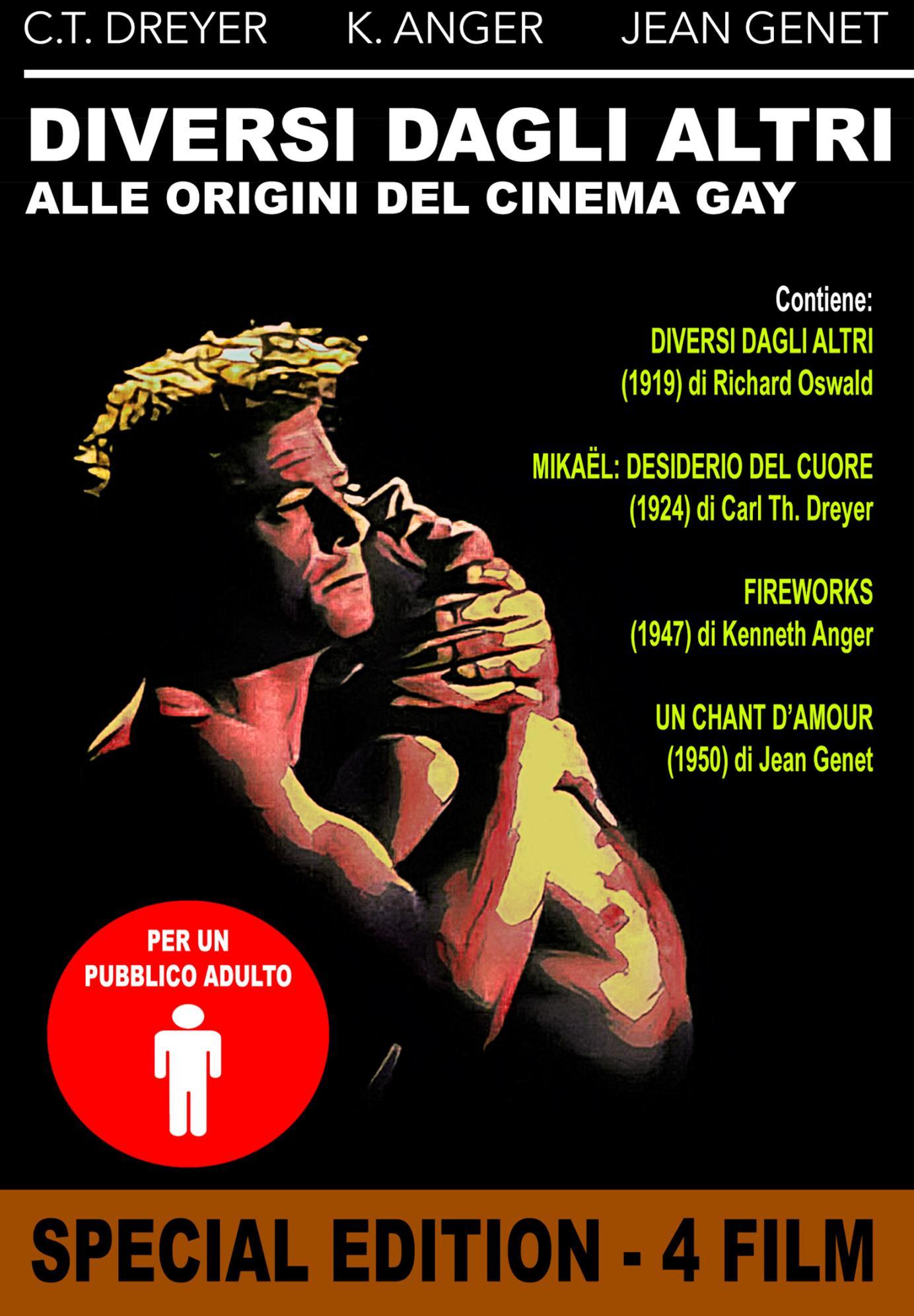 DIVERSI DAGLI ALTRI: ALLE ORIGINI DEL CINEMA GAY (DVD)