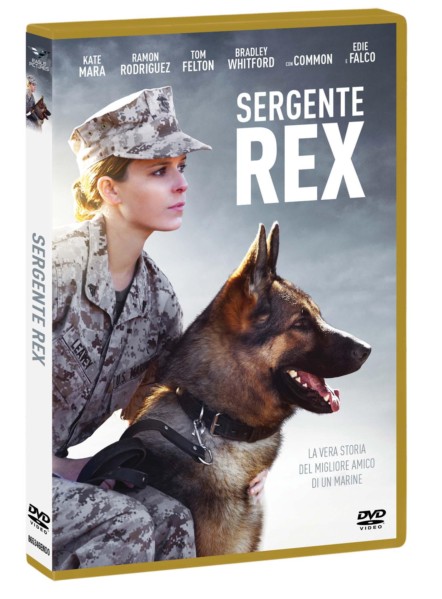 SERGENTE REX (DVD)