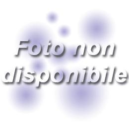E' ARRIVATO IL BRONCIO (DVD)