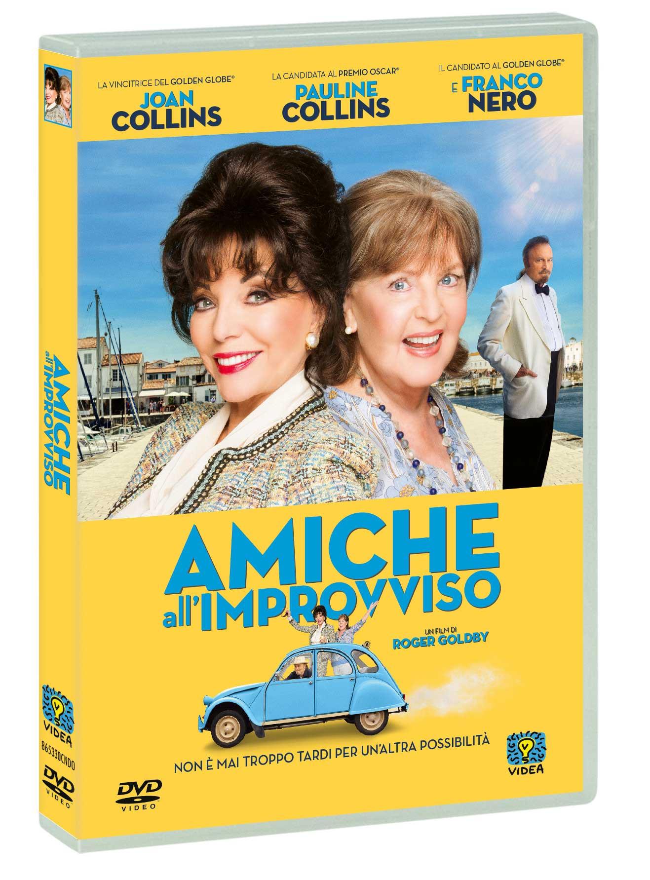 AMICHE ALL'IMPROVVISO (DVD)