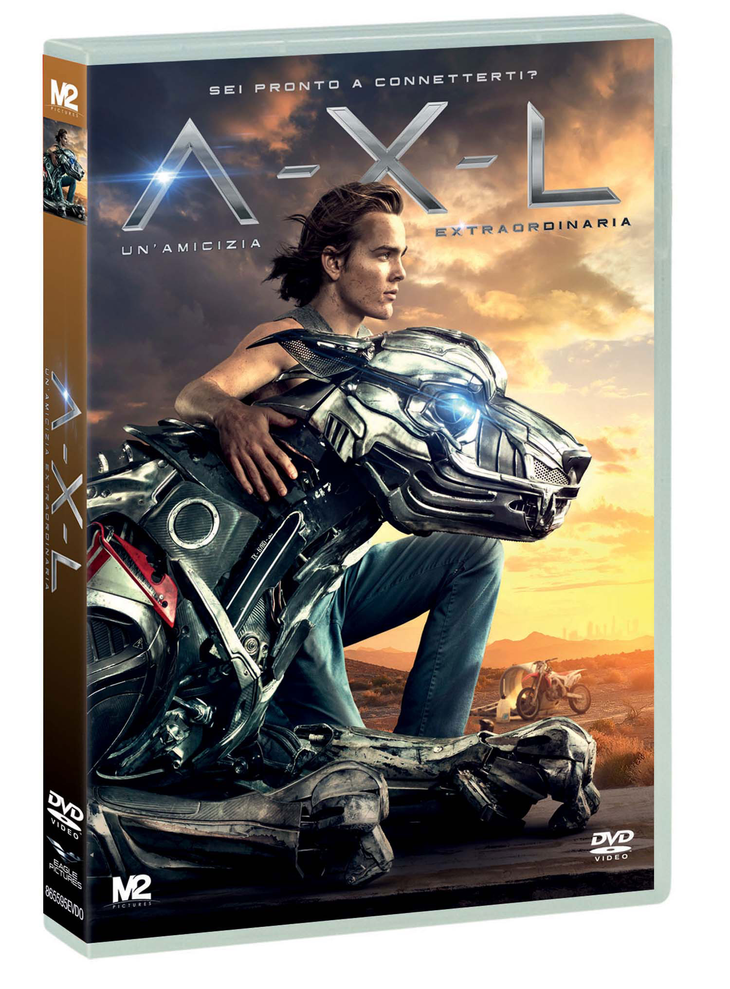 A-X-L - UN'AMICIZIA EXTRAORDINARIA (DVD)