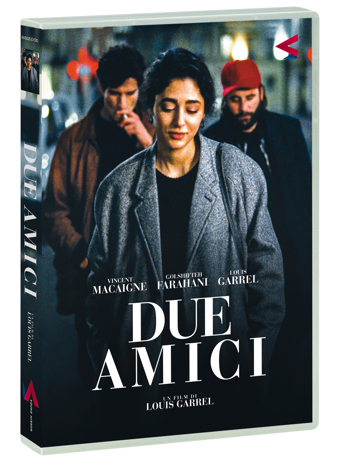 DUE AMICI (DVD)