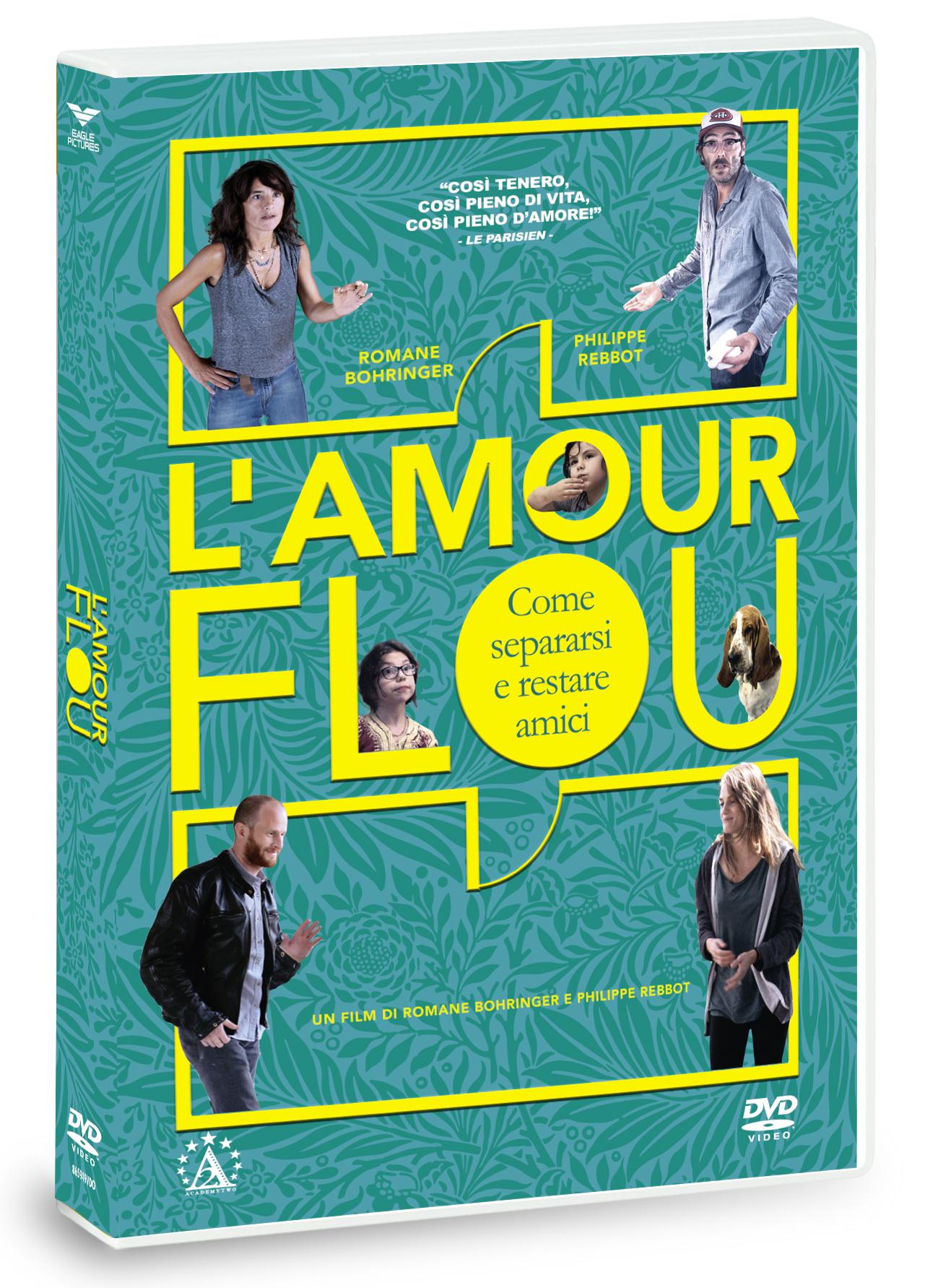 L'AMOUR FLOU - COME SEPARARSI E RESTARE AMICI (DVD)