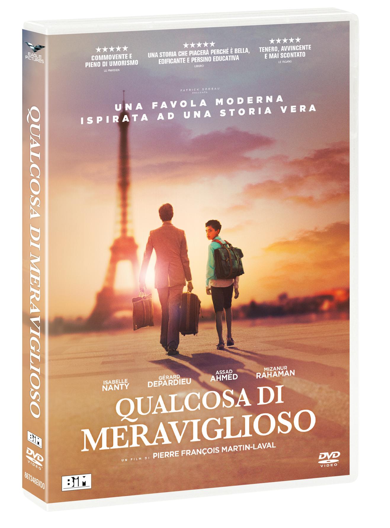 QUALCOSA DI MERAVIGLIOSO (DVD)