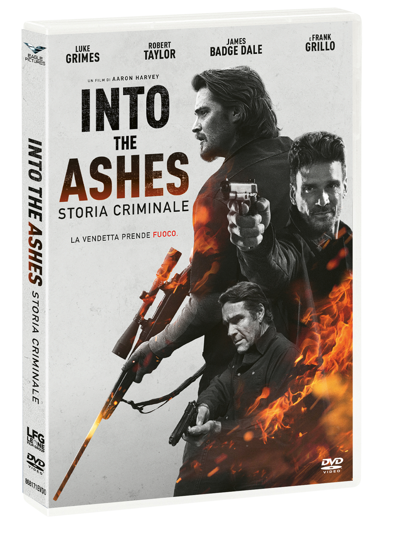 INTO THE ASHES - STORIA CRIMINALE (DVD)