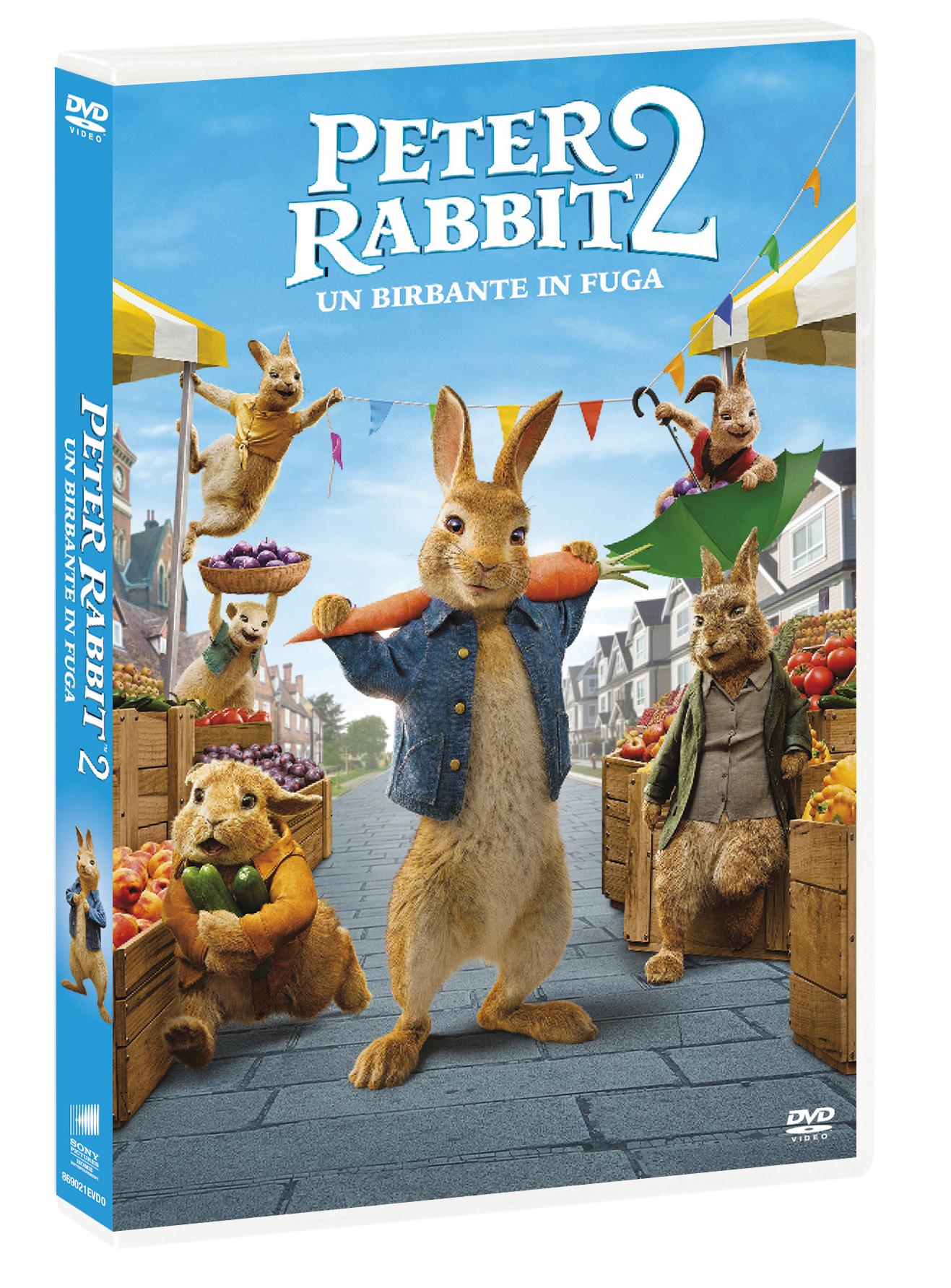 PETER RABBIT 2 - UN BIRBANTE IN FUGA (DVD)