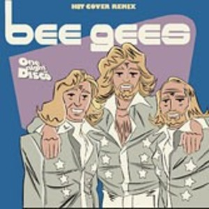 ONE NIGHT IN DISCO BEE GEES (CD)
