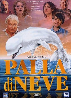 PALLA DI NEVE (DVD)