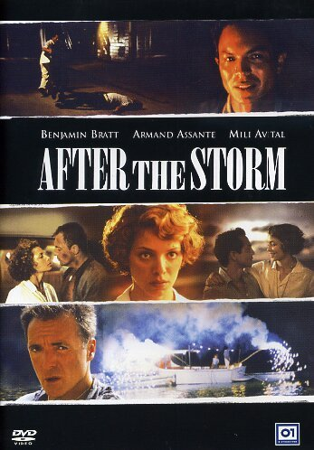 AFTER THE STORM (2001 ) (DVD)