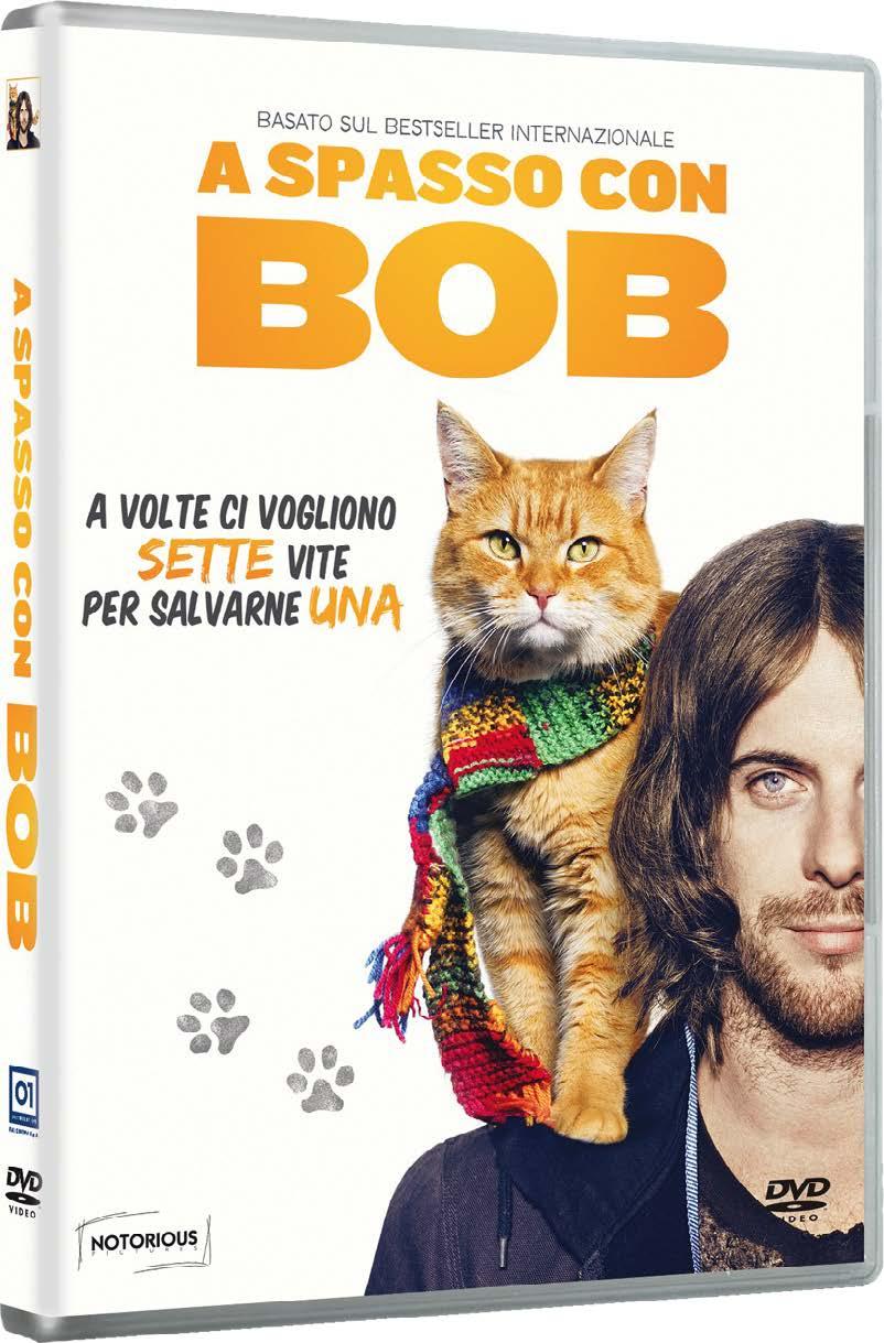 A SPASSO CON BOB (DVD)