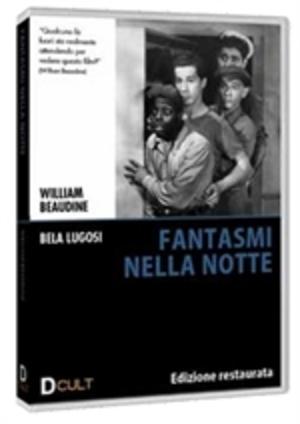 FANTASMI NELLA NOTTE (DVD)