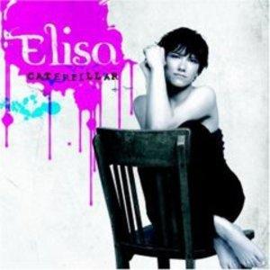 ELISA - CATERPILLAR ELISA (CD)