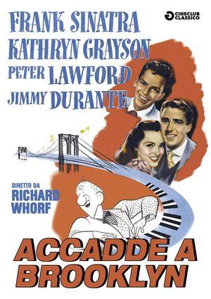 ACCADDE A BROOKLYN (DVD)