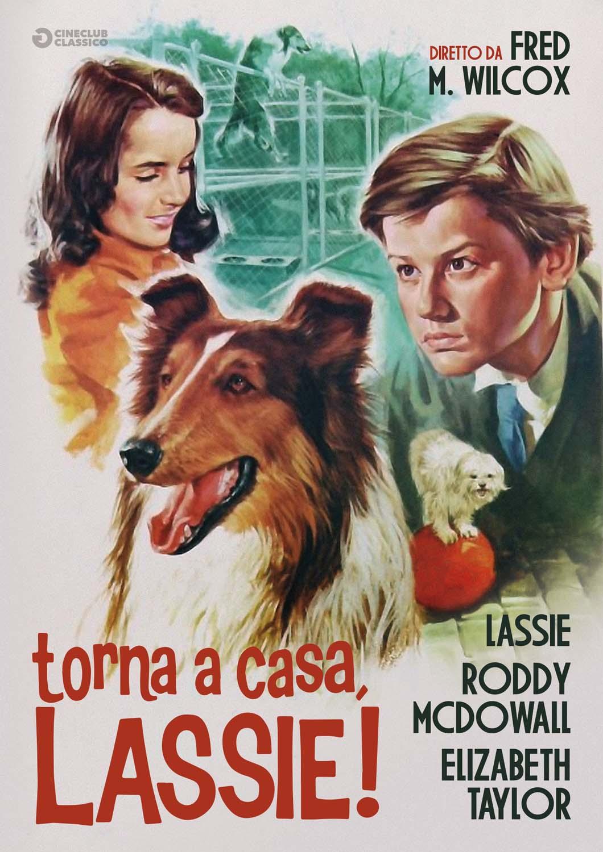 TORNA A CASA LASSIE (DVD)