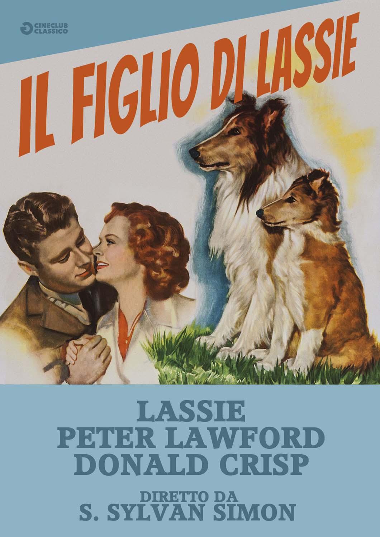IL FIGLIO DI LASSIE (DVD)