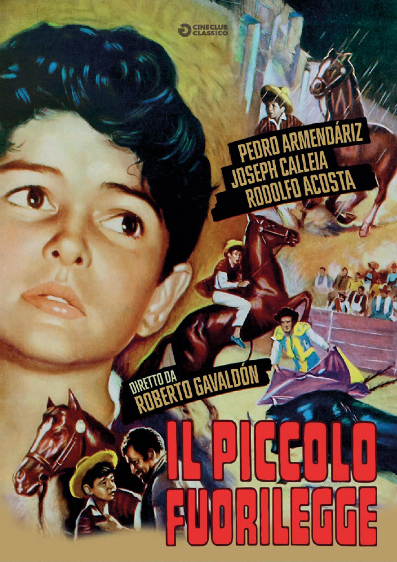 PICCOLO FUORILEGGE (DVD)