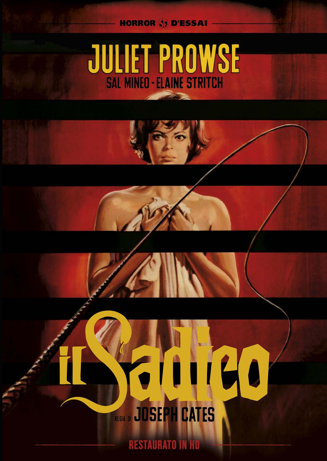 IL SADICO (RESTAURATO IN HD) (DVD)