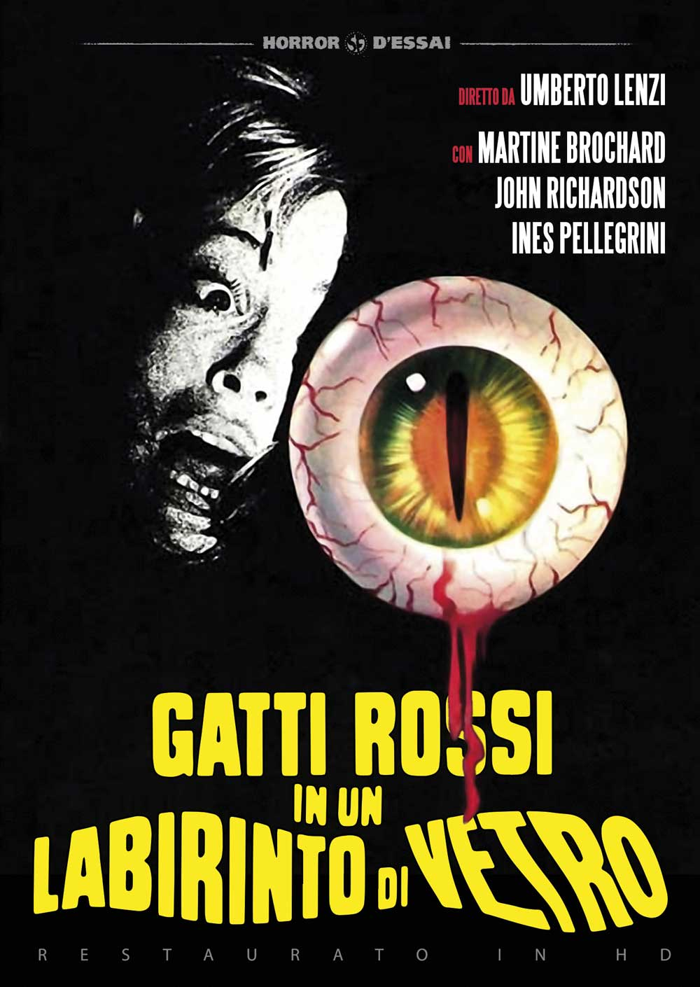 GATTI ROSSI IN UN LABIRINTO DI VETRO (RESTAURATO IN HD) (DVD)