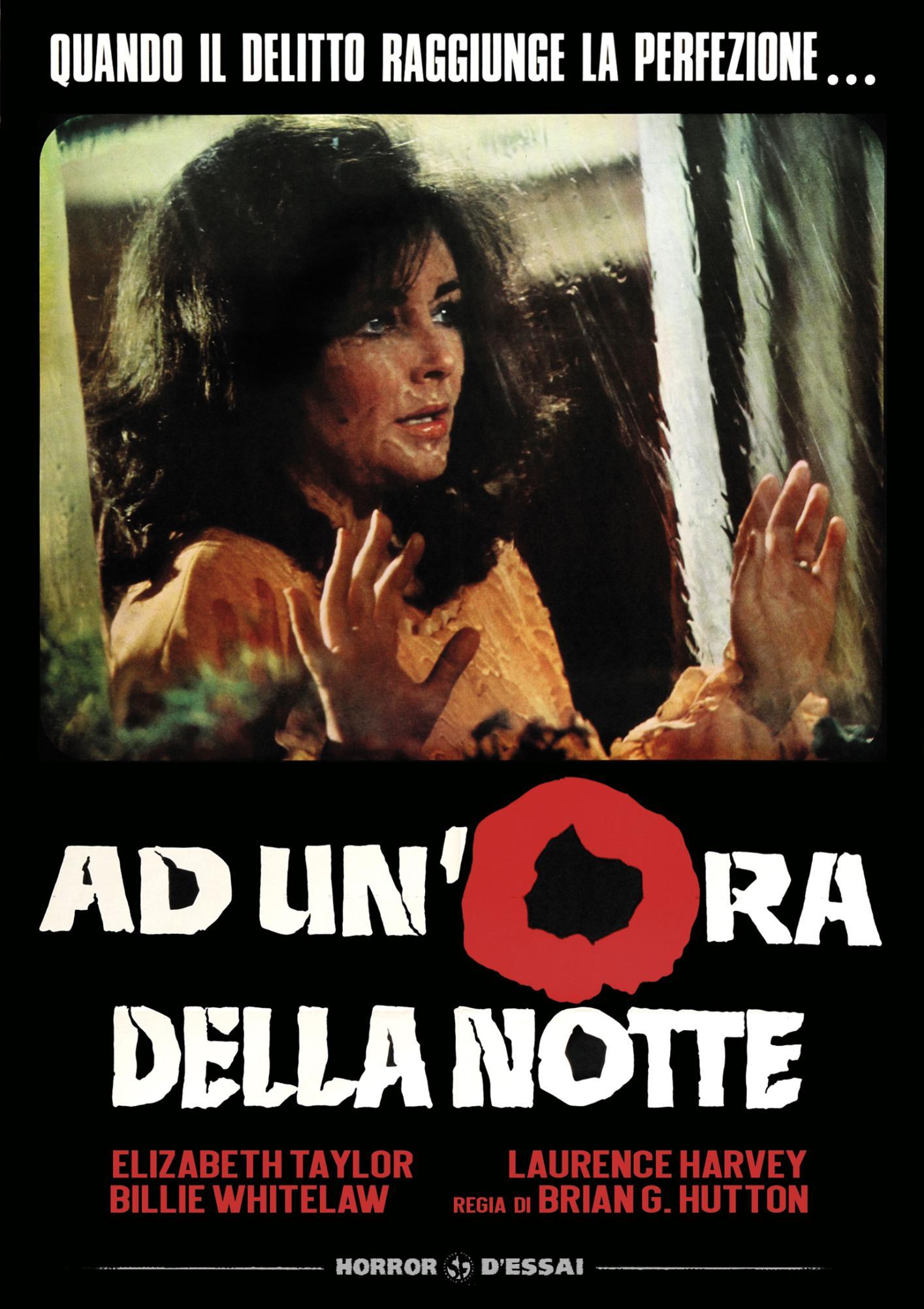 AD UN'ORA DELLA NOTTE (DVD)