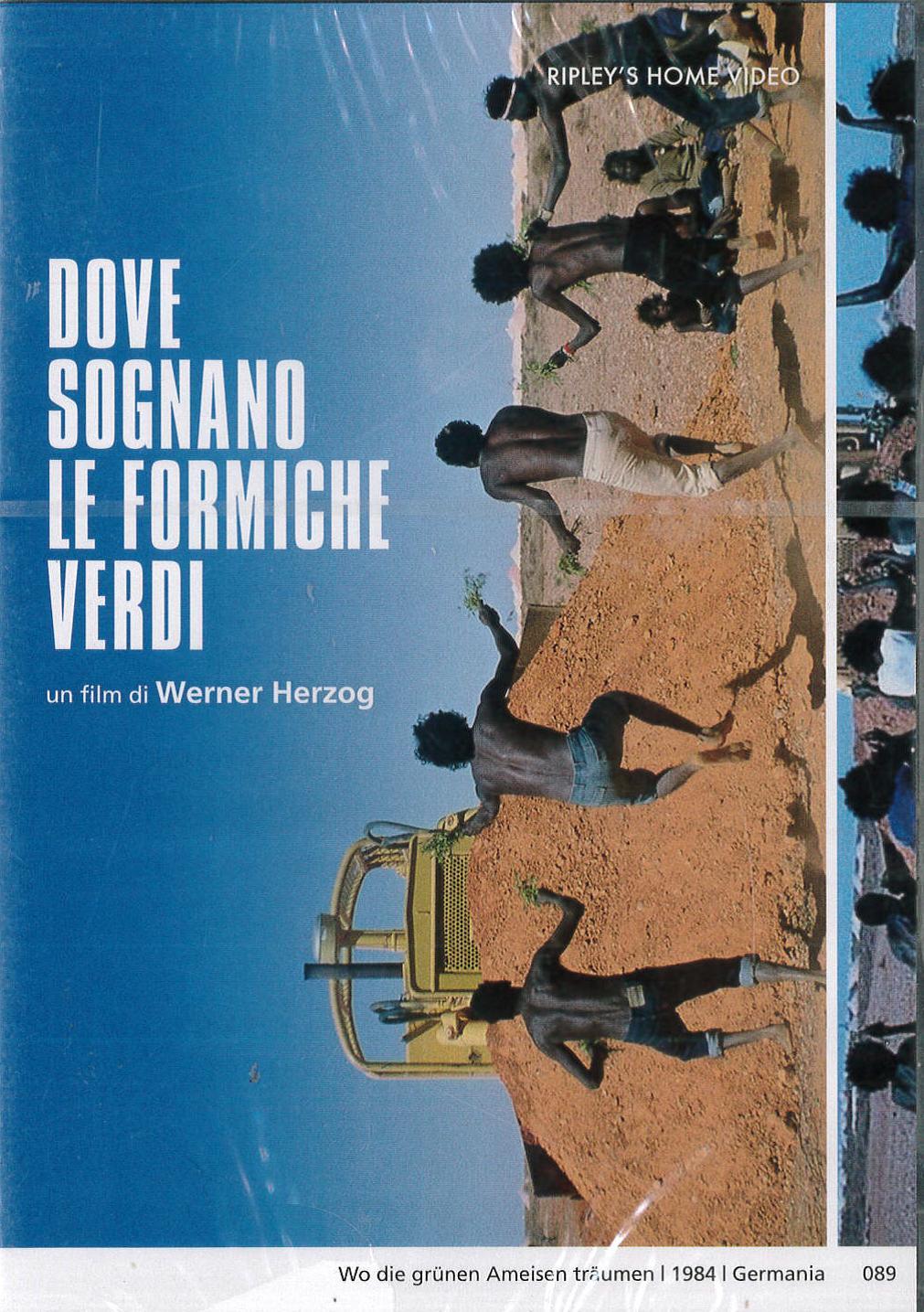 DOVE SOGNANO LE FORMICHE VERDI (2 DVD) (DVD)