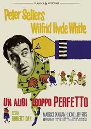 UN ALIBI TROPPO PERFETTO (DVD)