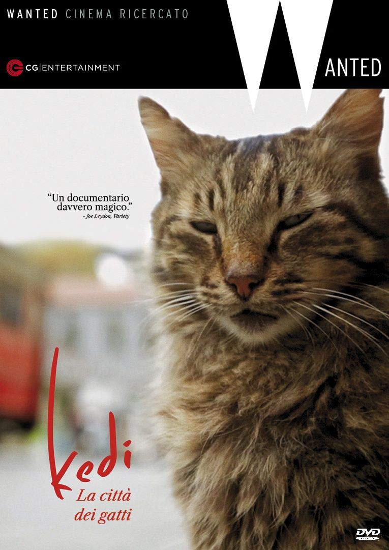 KEDI - LA CITTA' DEI GATTI (DVD)