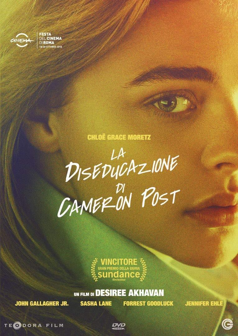 LA DISEDUCAZIONE DI CAMERON POST (DVD)