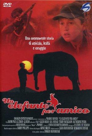 UN ELEFANTE PER AMICO (DVD)