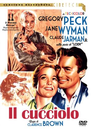 IL CUCCIOLO (DVD)